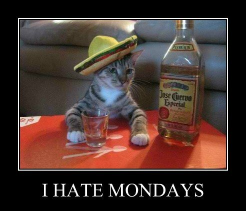 demotivational-posters-i-hate-mondays