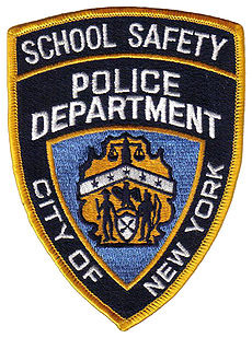 2010_1_schoolsafety