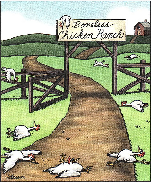 Image result for boneless chicken ranch gary larson