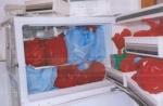 Freezer full of fetal remains