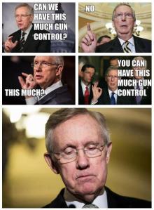 McConnell Gun Control