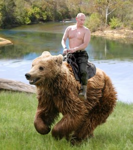 Putin bear 2