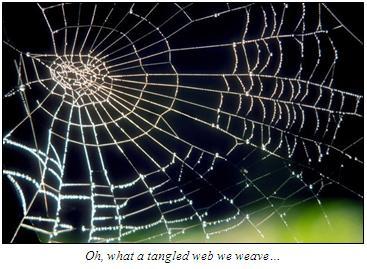 tangledweb