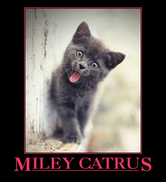 Miley Catrus