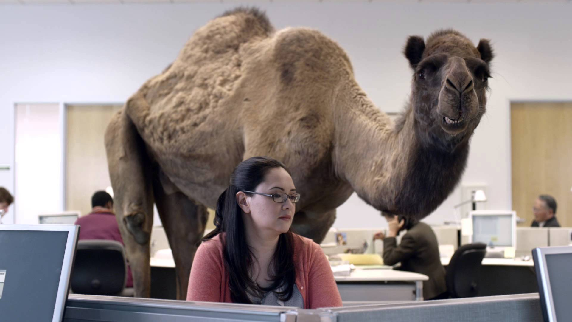 Hump Day Open Thread