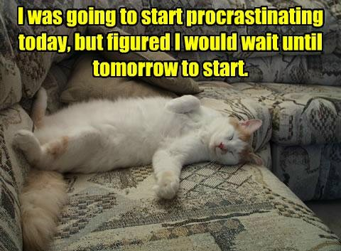 funny-pictures-cat-procrastinates-on-couch