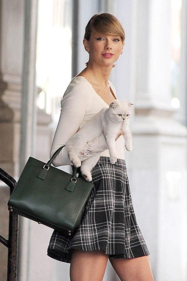 Taylor Swift Leaving TriBeCa Apartment with her Cat Olivia Benson