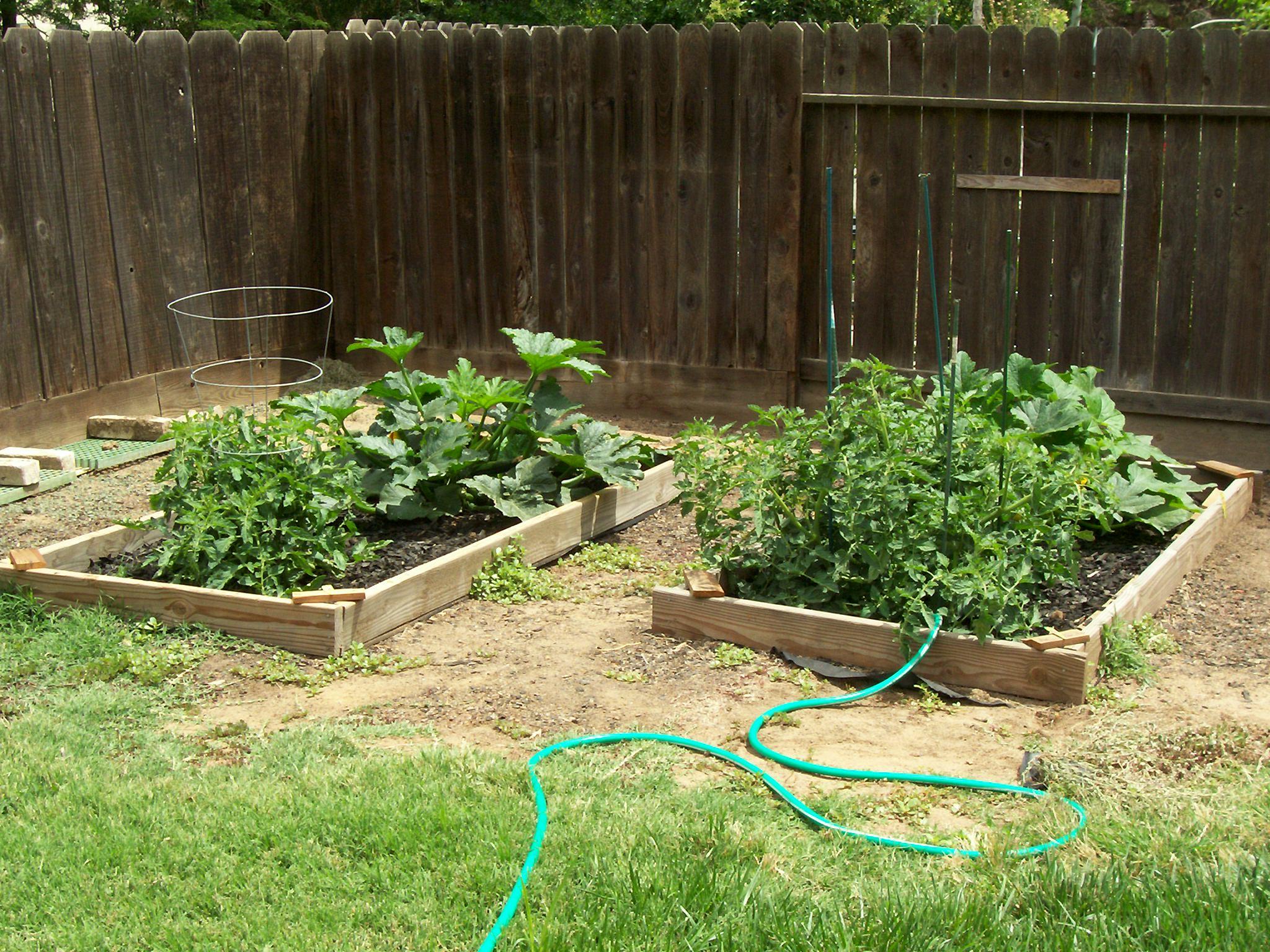 My Secret Garden: Gardening Open Thread
