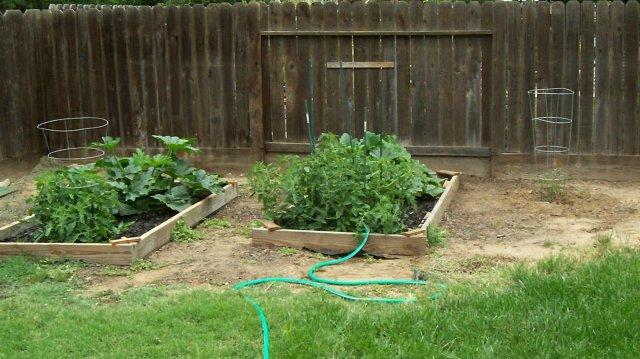 my secret garden 002