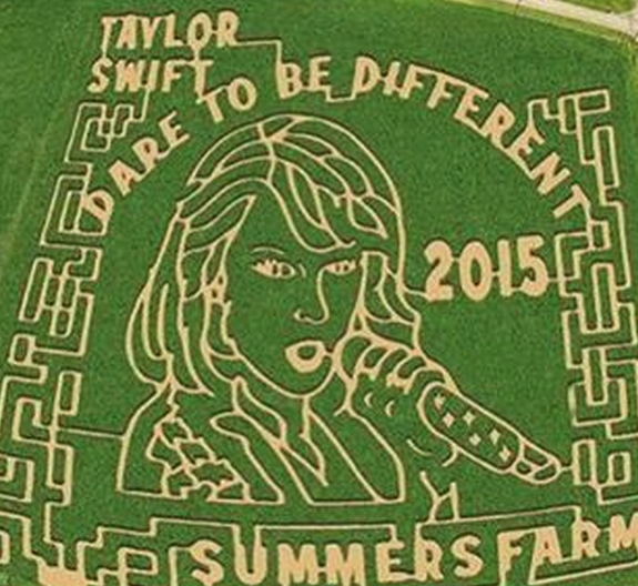 bal-taylor-swift-approves-frederick-farm-corn-maze-designed-to-look-like-her