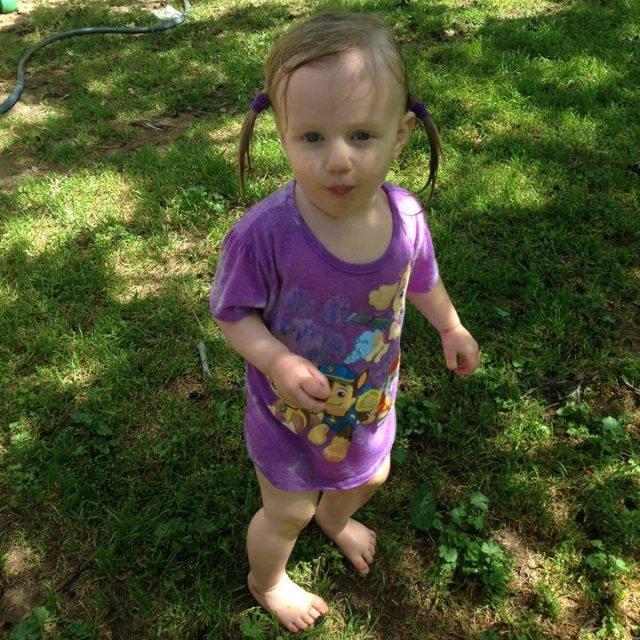 Lily luvs running thru the sprinkler