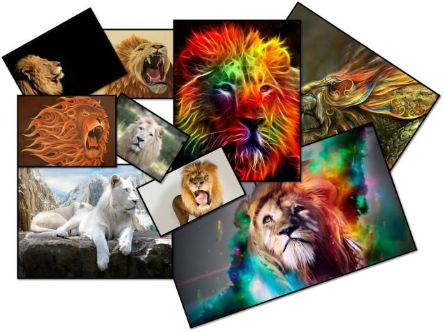 limitless-lions